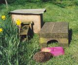 Hedgehog house and feeding box - deliberate error, hog out in daytime!